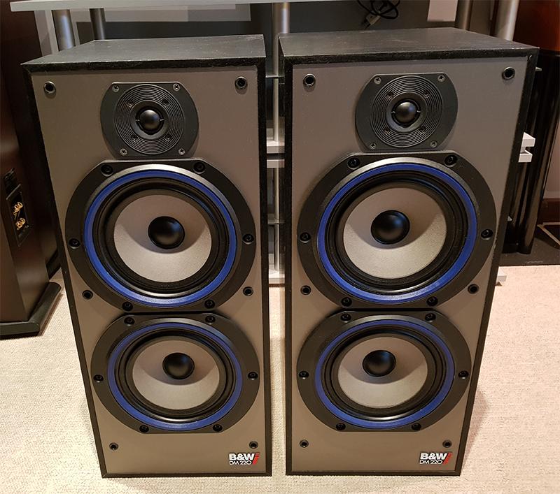 B&W DM220i
